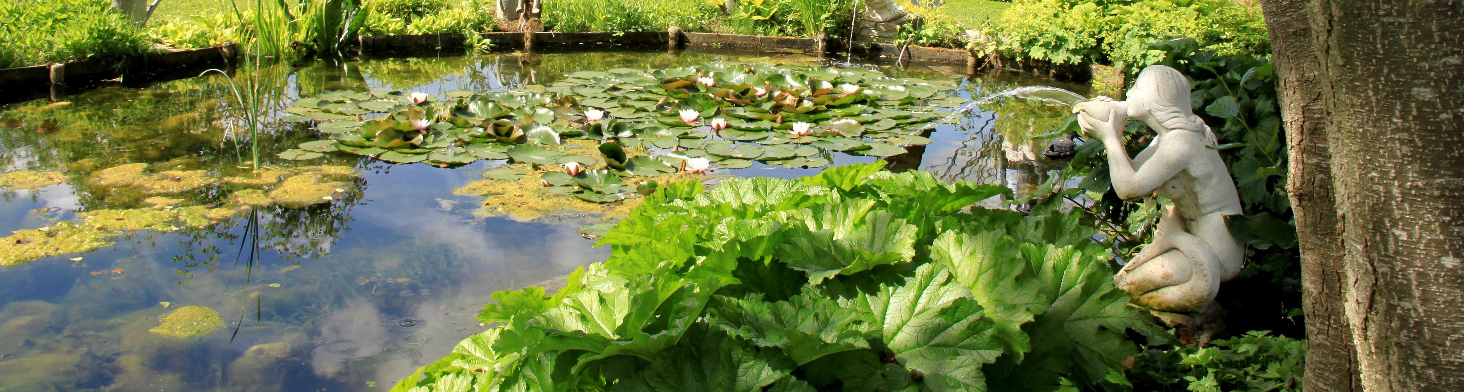 banniere jardin paisible